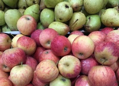 jabuke i kruske