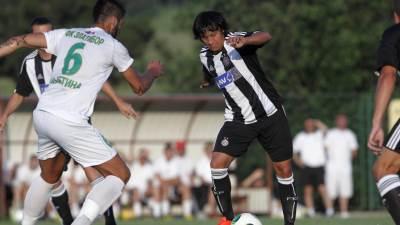 Predrag Luka, FK Partizan