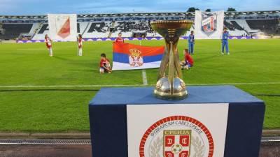 jagodina vojvodina finale kupa kup srbije 2013 2014 6.jpg