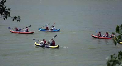 kajak, reka, regata, veslanje, čamci, čamac, leto, priroda,