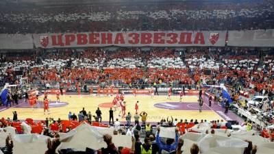 arena zvezda