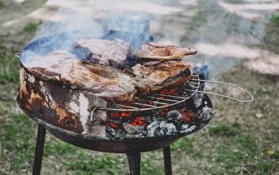 roštilj, roštiljanje, 1. maj, vatra
