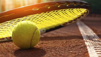 tenis loptica teniska reket šljaka teren pokrivalica.jpg