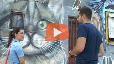 grafiti, umetnost, likovna umetnost, slikarstvo, Beograd, murali