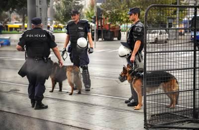 policijski psi, pas policija, policija, policajci, saobraćaj, nesreća, policija na ulici, policijska blokada, kordon policije,