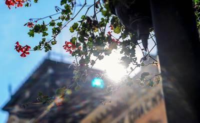 lepo vreme, sunce, novembar, miholjsko leto, tenpratura, sunčan dan,