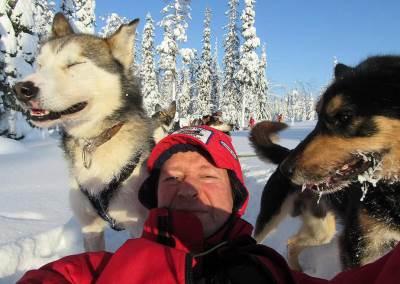 haski, vožnja pasa, trka pasa, finska, sale haski, aleksandar nikolić