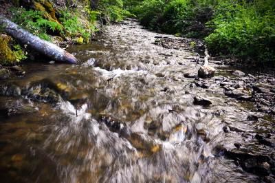 potok, reka, potočić, vlasina, voda, izvor