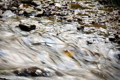 reka, potok, izvor, voda, vlasina, priroda,