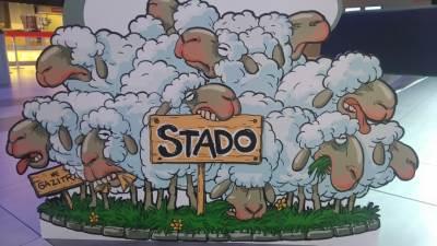 stado, ovce, film Stado