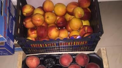 breskve, breskva, voće