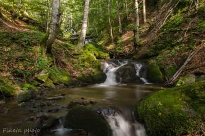 priroda, šuma, reka, vodopad