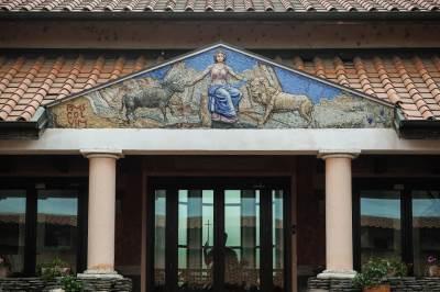 viminacijum, arheološko nalazište, srbija, istorija,