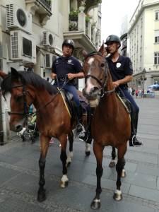 konj, konji, policija na konjima