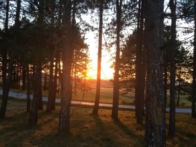 priroda, zlatibor, sunce, zalazak sunca