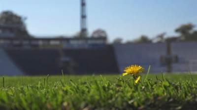 Partizan, stadion Partizana, JNA, trava, fudbalski teren