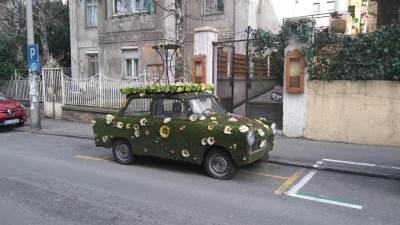 automobil ekologija cveće parking trabant