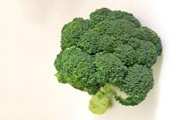 brokoli, povrće, hrana, ishrana
