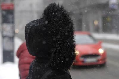 sneg, zima, mećava, zimska janka, kapuljača