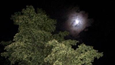 mesec, noć