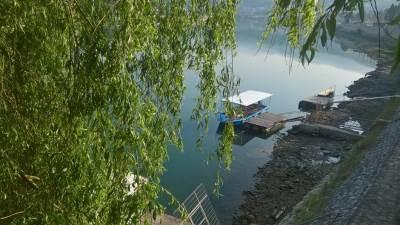 reka, drvo, drina, čamac, vrba