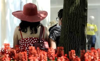 vrućina, leto, lepo vreme, cveće, šešir