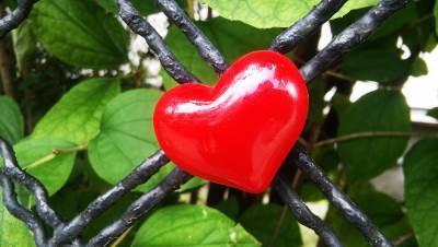 srce, ljubav