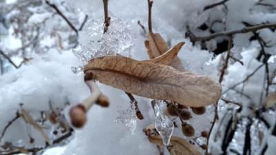 led, sneg, zima, vremenska