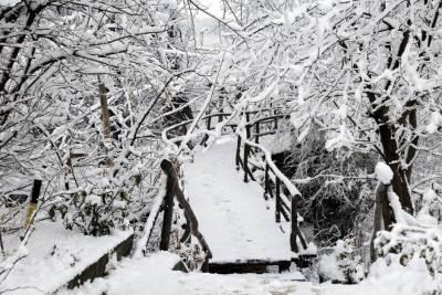 zima, sneg, beograd,