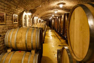 vino, vinarija, bure, kovačević, miroslav kovačević