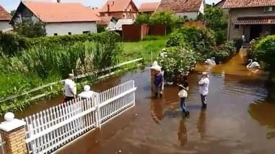 poplava, poplave, Ovča, poplava u Ovči