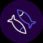 Ribe.png